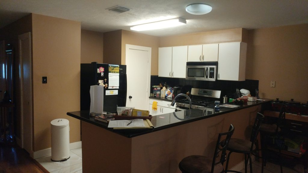 This is the before image of the kitchen.